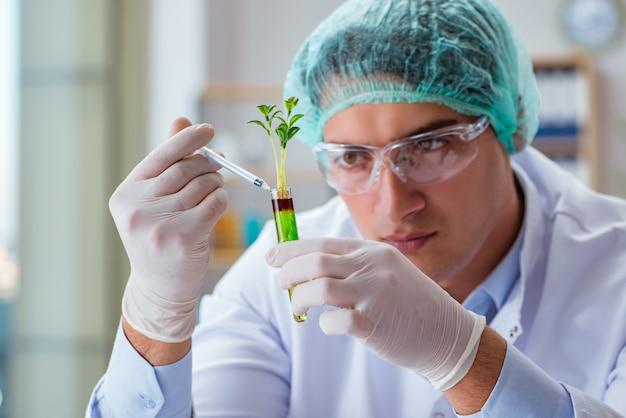 Scientifique en biotechnologie travaillant dans le laboratoire