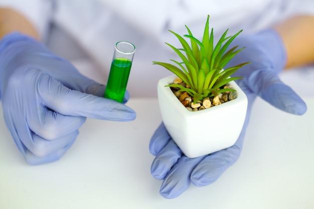 Le scientifique, dermatologue fabrique le produit cosmétique aux herbes naturelles et biologiques en laboratoire. concept de soins de la peau saine beauté. herboristerie, emballage vide, bouteille, contenant.crème, sérum