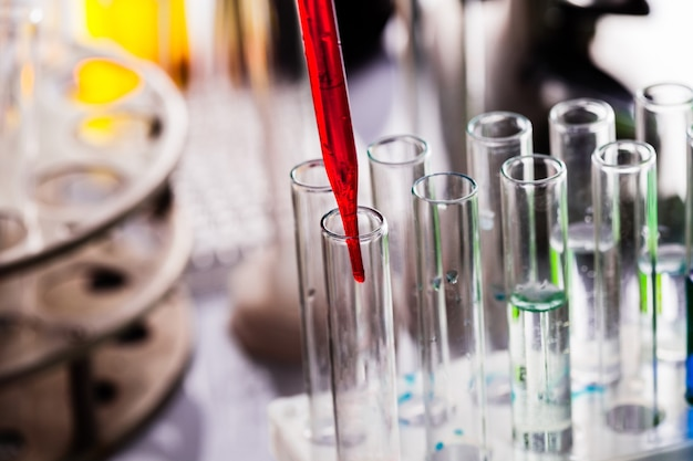 Un scientifique montre une diffusion dans la boîte de pétri