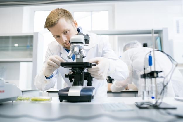 Scientifique, utilisation, microscope, laboratoire