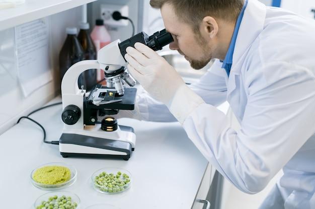 Scientifique, utilisation, microscope