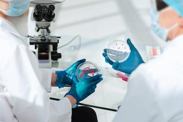 Des scientifiques en microbiologie discutent des résultats de leurs recherches .