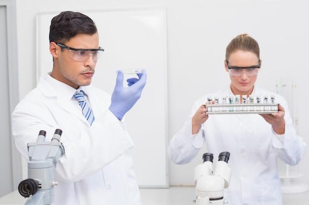 Scientifiques en regardant une boîte de pétri et des tubes dans le laboratoire