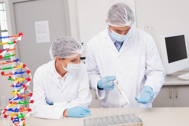 Scientifiques travaillant avec des boîtes de pétri en laboratoire