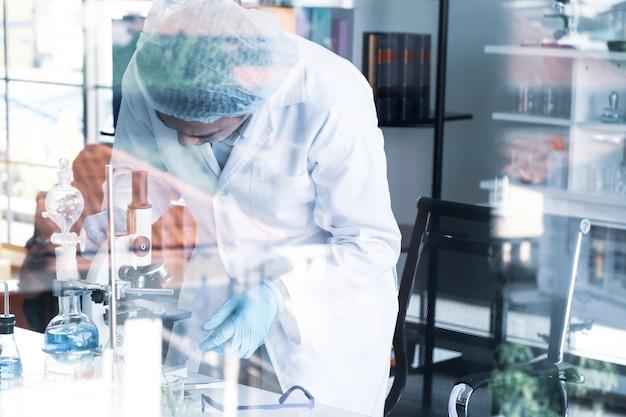 Scientifiques travaillant dans le laboratoire
