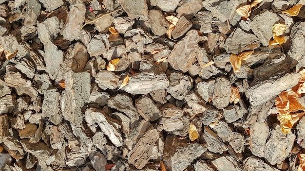 Sciure de bois pour le jardin. texture d'une écorce d'arbre allongée sur le sol. arrière-plan d'une écorce d'arbre. écorce décorative, paillis, paillage. copeaux de bois décoratifs. paillis de pin naturel brun.