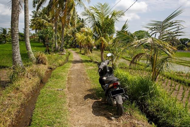 Scooter sur un chemin.