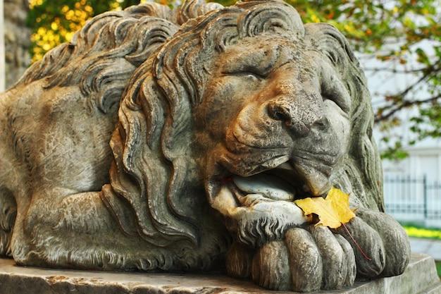 Sculpture d'un lion dans la ville de lviv
