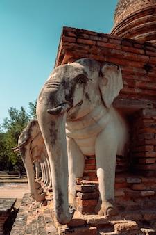 Sculptures d'éléphants autour du stupa. wat chang lom dans les temples historiques de sukhothai, l'ancienne ville au patrimoine bouddhiste du nord-est de la thaïlande.