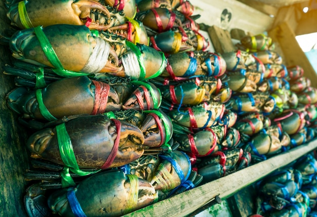 Scylla serrata. les crabes frais sont attachés avec des cordes en plastique colorées et disposés en rangées ordonnées sur le marché des fruits de mer en thaïlande. matières premières pour le concept de restaurants de fruits de mer avec lumière flare
