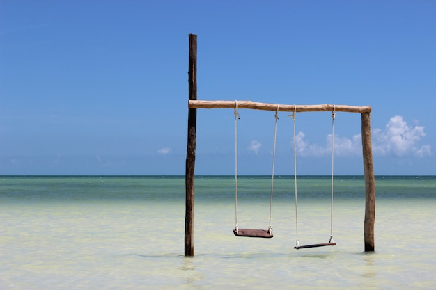 Se balance au-dessus de l'eau sur la côte de la mer