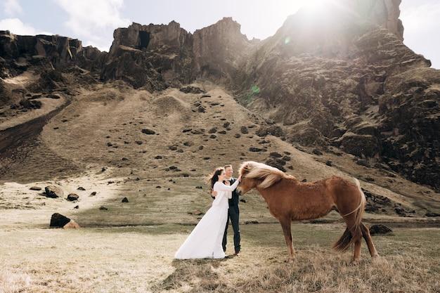 Séance photo de mariage à destination en islande avec des chevaux islandais fonds d'écran épiques les mariés