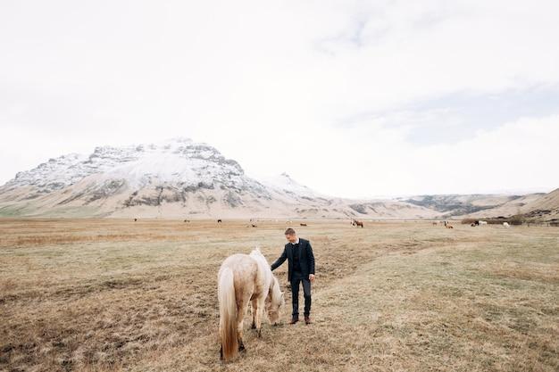 Séance photo de mariage à destination de l'islande avec des chevaux islandais un gars en pantalon un pull et un