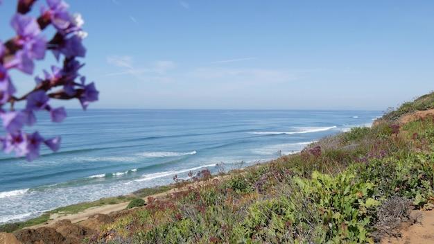 Seascape vista point, del mar torrey pines, côte californienne usa. marée océanique, vue sur les vagues de la mer bleue