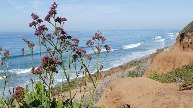 Seascape vista point, point de vue à del mar torrey pines, côte californienne usa. les vagues de l'océan donnent sur