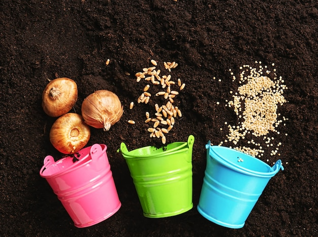 Seaux en métal avec graines et oignons pour le jardinage sur le sol