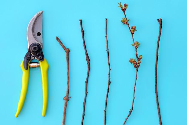Sécateur en métal pour couper les arbres et les buissons avec des poignées en plastique