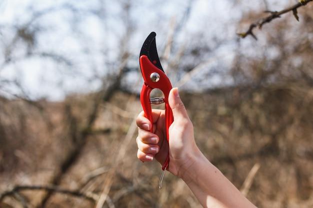 Sécateur rouge dans les mains d'une fille