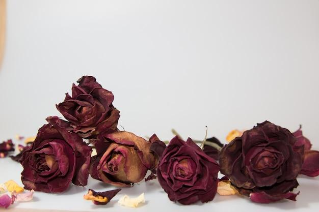 Séché de pétale de rose, arôme de fleur dans un vase