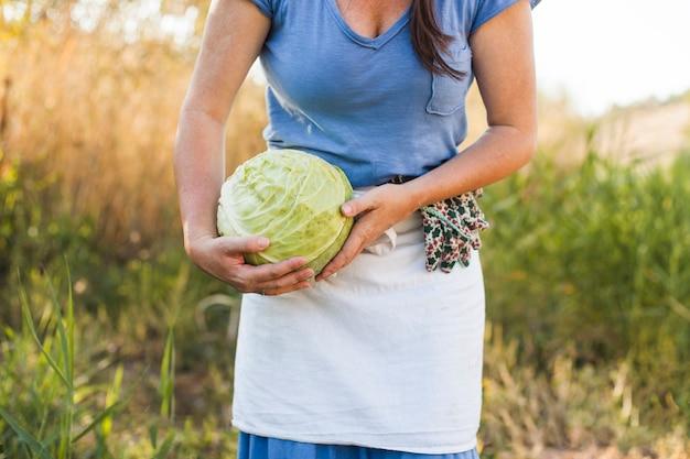 Section médiane d'une femme tenant un chou récolté