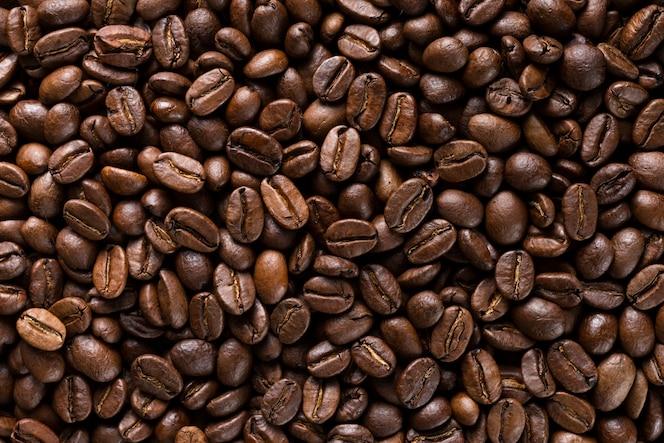 Sélection de gros plan de grains de café biologiques