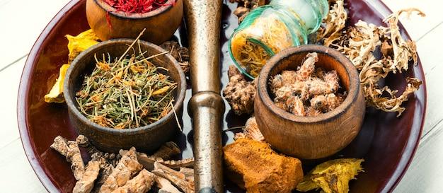 Sélection d'herbes médicinales
