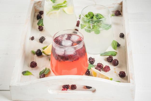 Sélection de trois sortes de gin tonic