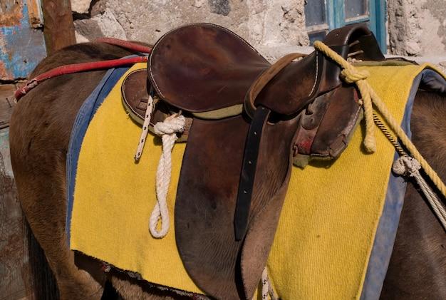 Selle sur un âne à santorin en grèce