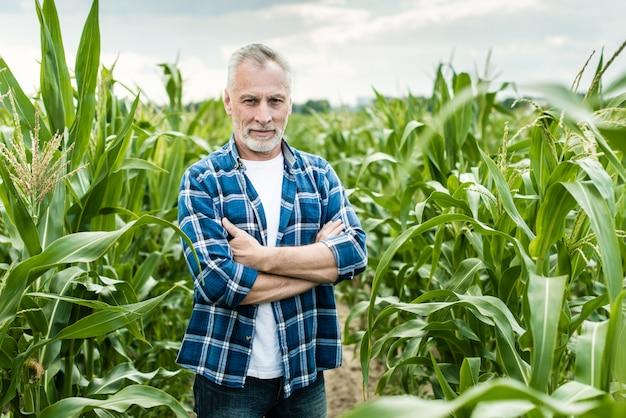 Senior agriculteur debout dans un champ de maïs