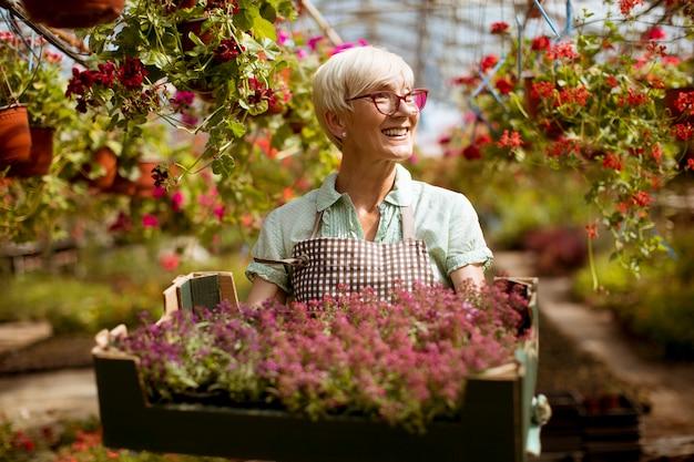 Senior femme tenant un panier rempli de fleurs