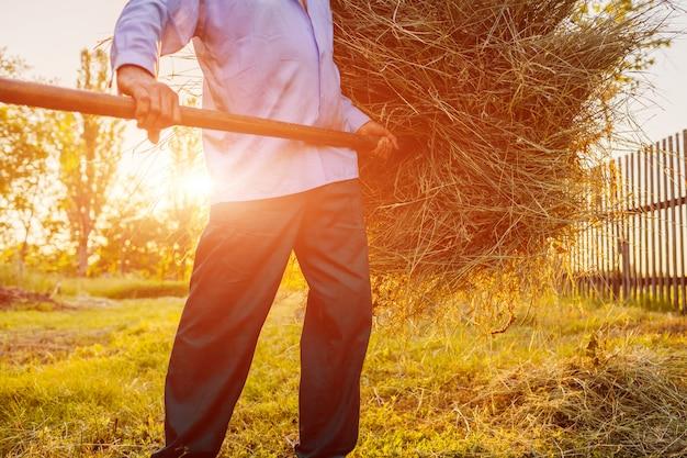 Senior fermier homme rassemble le foin avec une fourche au coucher du soleil dans la campagne.