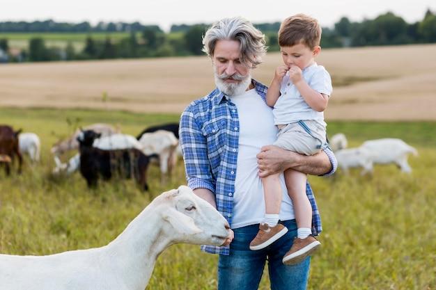 Senior holding petit garçon en jouant avec des chèvres
