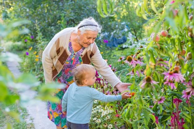 Senior lady jouant avec petit garçon dans le jardin fleuri. grand-mère avec petit-enfant regardant et admirant les fleurs en été. les enfants jardinent avec les grands-parents. arrière-grand-mère et arrière-petit-fils.