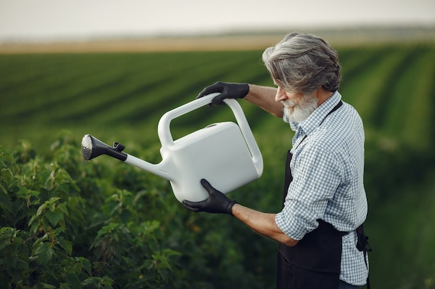 Senior man arroser ses plantes dans son jardin avec arrosage. homme dans un tablier noir.
