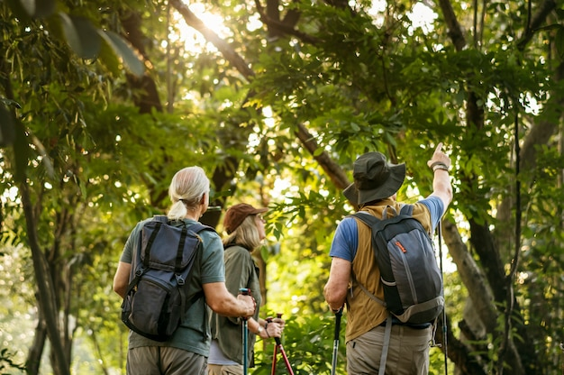 Seniors en randonnée dans une forêt