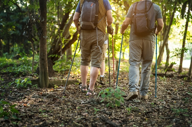 Seniors trekking dans une forêt