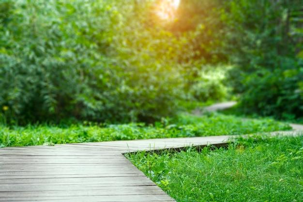 Sentier en bois dans le parc de la ville, sentier écologique en bois.
