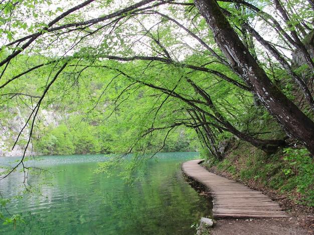 Sentier en bois sur le parc national de plitvice