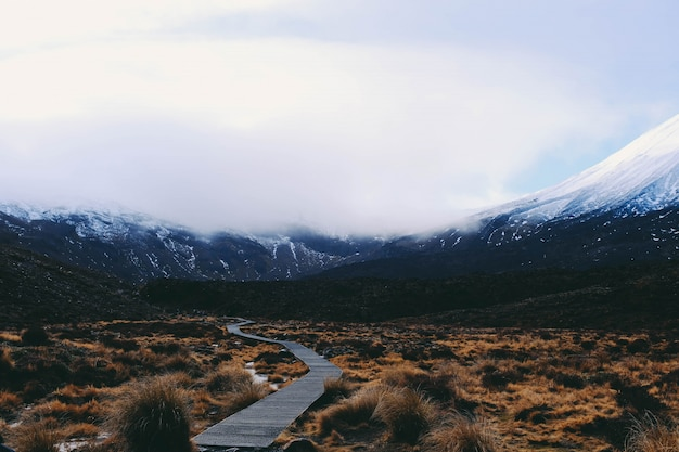 Sentier en bois traversant un champ avec la montagne couverte de neige