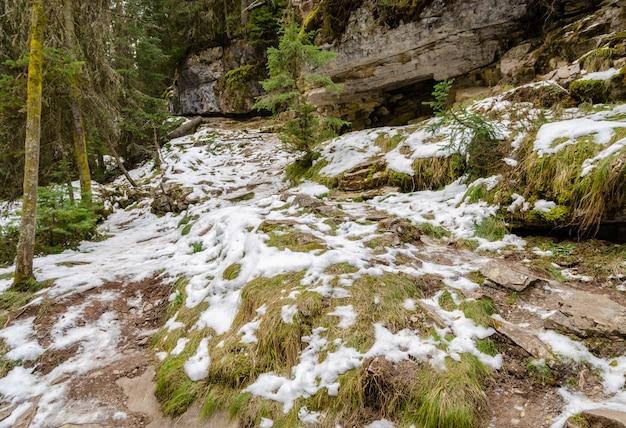 Sentier johnston canyon dans le parc national banff, alberta, canada