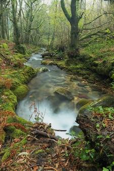 Sentier le long de la rivière fraga