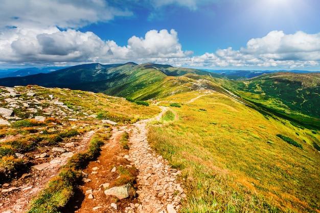 Sentier de montagne dans les carpates, en ukraine.