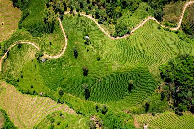 Le sentier de montagne relie la ville et la zone agricole de chiang rai en thaïlande