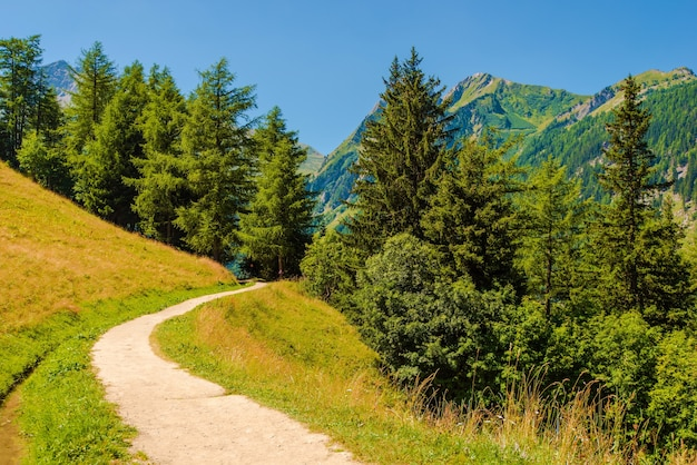 Sentier des montagnes suisses