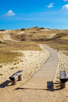 Sentier pédestre à curonion spit en lituanie