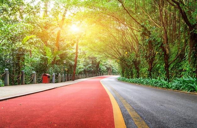 Sentier pédestre rouge