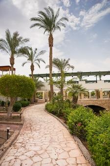 Sentier en pierre à travers le jardin avec palmiers, buissons et fleurs