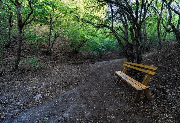 Sentier de randonnée sur kus tba à tbilissi