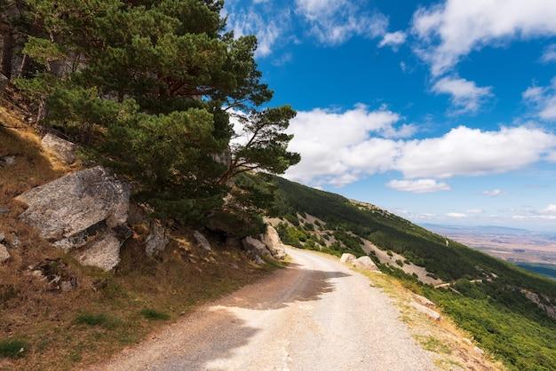 Sentier rural dans la montagne de moncayo, région d'aragon, espagne. environnement naturel en saison estivale.