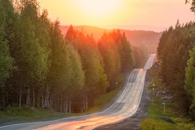 Sentier vallonné à travers la forêt au coucher du soleil